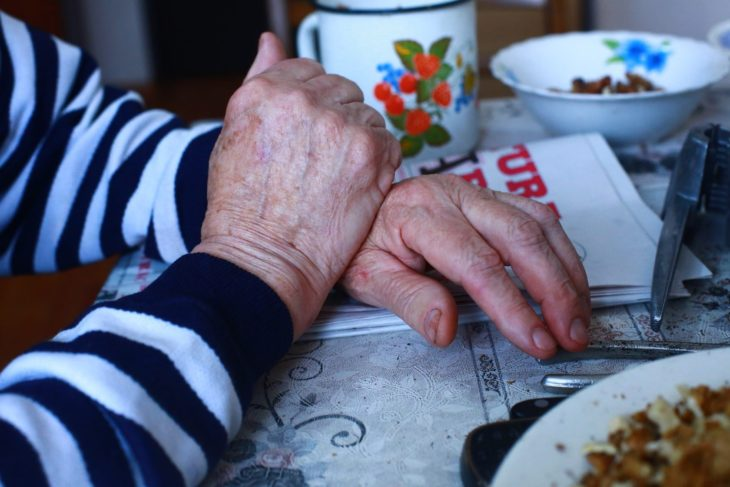 Viața de pensionar. Realități diferite între Moldova și Olanda