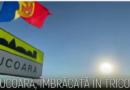 Cu ocazia sărbătorilor naționale, un sat din raionul Cahul, s-a îmbrăcat în tricolor / VIDEO