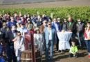 Ambasadori acreditaţi în R. Moldova au cules struguri în UTA Gagauz-Yeri