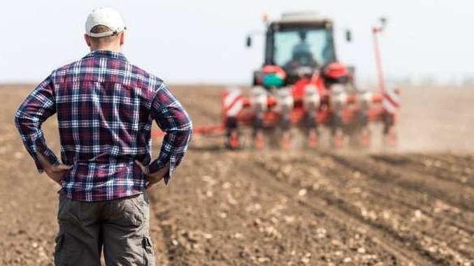Guvernul a alocat 57 mln lei pentru compensarea pierderilor suportate de agricultori