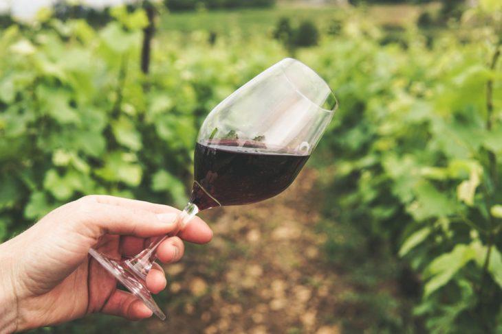 Rezultat excepțional pentru sectorul vitivinicol în 2020! Vinul Moldovei a înregistrat un nou RECORD de medalii la concursurile internaționale