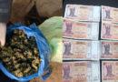Un bărbat din Cahul, reținut în flagrant cu droguri de 100 mii lei. Ce pedeapsă riscă