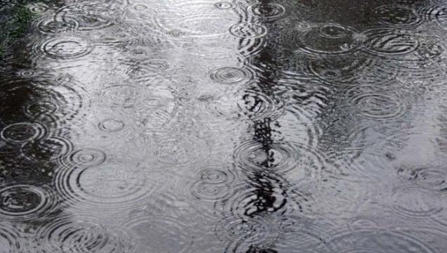 Hectare întregi de culturi au fost afectate de pe urma ploilor de sîmbătă în raoinul Cahul
