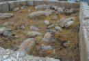 Două noi cazuri e Pestă Porcină în raionul Cahul. Au fost uciși 18 porci dintr-o gospodărie