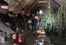 Doi bărbați, reținuți după ce din casele lor au fost ridicate droguri și muniții