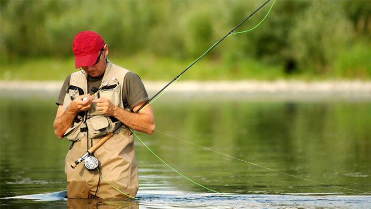 Monitorul Oficial va publica perioadele şi zonele de prohibiție a pescuitului în 2021