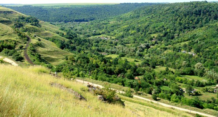 R. Moldova se aliniază la standardele de gestionarea durabilă a pădurilor în Europa