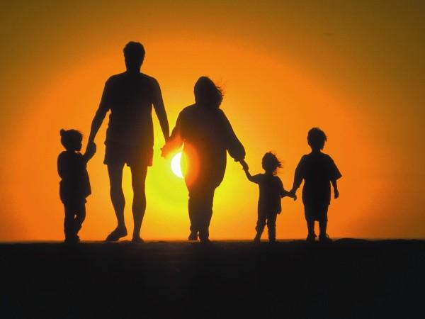 Socialiștii propun completarea Constituției la articolul 48. Familia