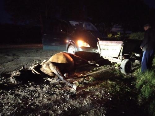 Accident nocturn la Cahul. Un mercedes a tamponat o căruță la marginea orașului // FOTO