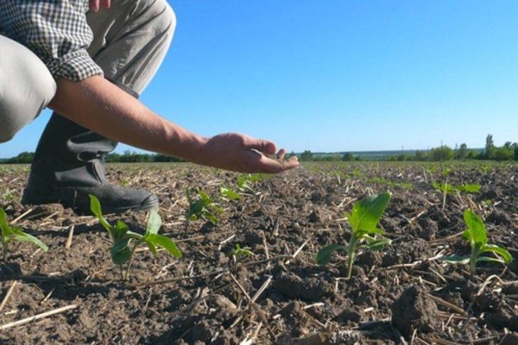 Republica Moldova ar putea beneficia de circa 15 milioane de dolari pentru gestionarea secetei în sudul țării