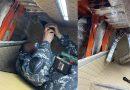 Două capturi de țigări la postul vamal Cahul. Câinele Serviciului Vamal a depistat peste 87 000 de țigarete în locuri special amenajate