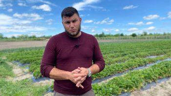 Fermier din Cahul: Proiectul EU4Cahul mi-a dat ani din viață //VIDEO
